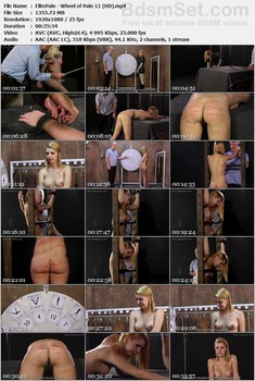 ElitePain - Full Constantly Updated SiteRip  BDSM SITERIPS